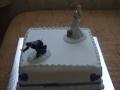 Denise's One Tier Wedding Cake