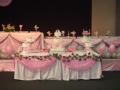 Zenny's 11 Tier Wedding Cake