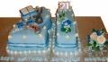 Jayni's 21st Birthday Cake