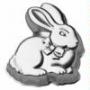 Cotton Tail Bunny Cake Tin