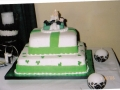 Pasty's 2 Tier Irish Themed Modern Wedding Cake