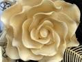 Gold Dasmask rose