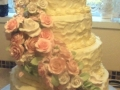Wedding Cake June